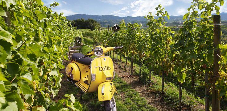 Let's take an adventure through Collio region on board a sidecar or a Vespa