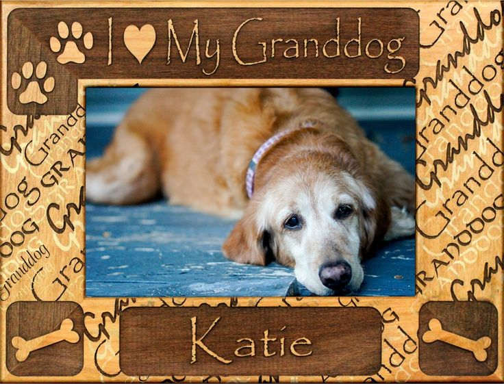 """Perfect Christmas present for Sarge's grandparents!! Personalized """"I Love My GrandDog"""" Dog Picture Frame."""