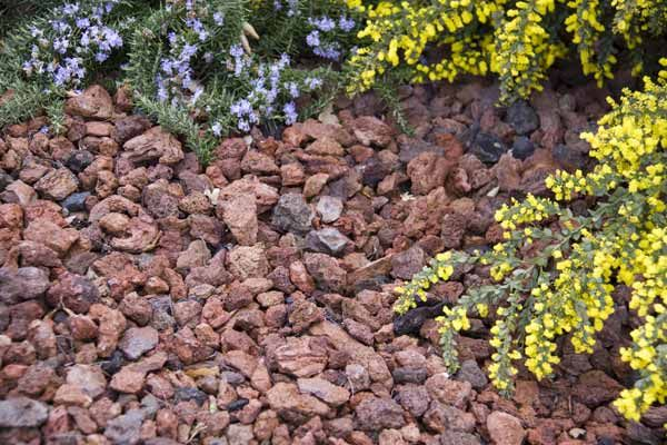 Use stone or gravel for mulch to cut down on costs. Rocks make a beautiful and cost-effective weed barrier that, unlike organic mulch, doesn't need annual refreshing. One cubic yard of medium-size pea gravel costs about $55 and can last for up to a decade; the same amount of organic mulch will set you back $40 each year.