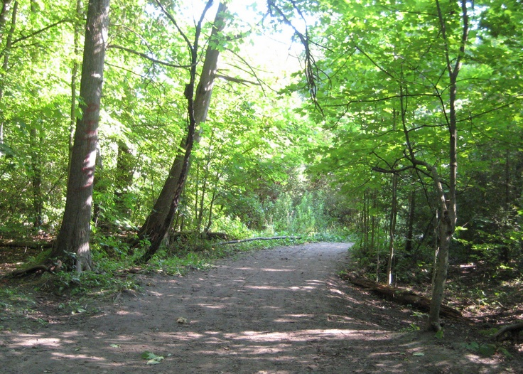 Oshawa Harmony Creek Dog Park