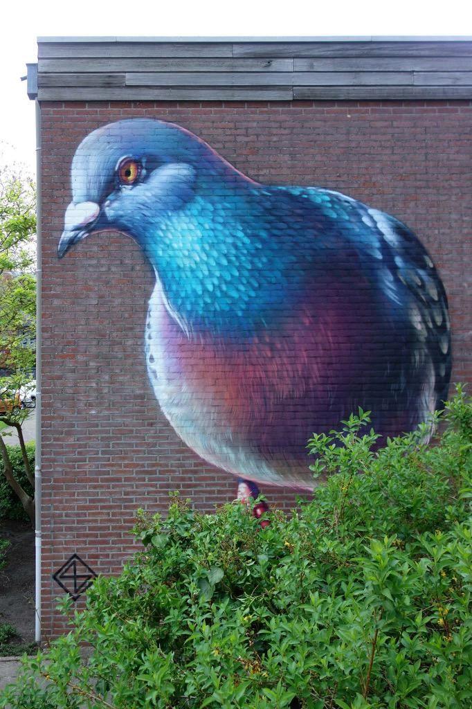 Super-Man, Super-Héros, et nous..., des Super-Pigeons ? / Street Art. / By Super A.