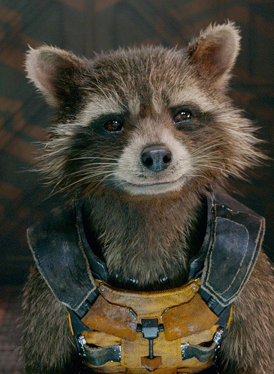 Rocket Battles a Necrocraft in Final Guardians of the Galaxy Clip