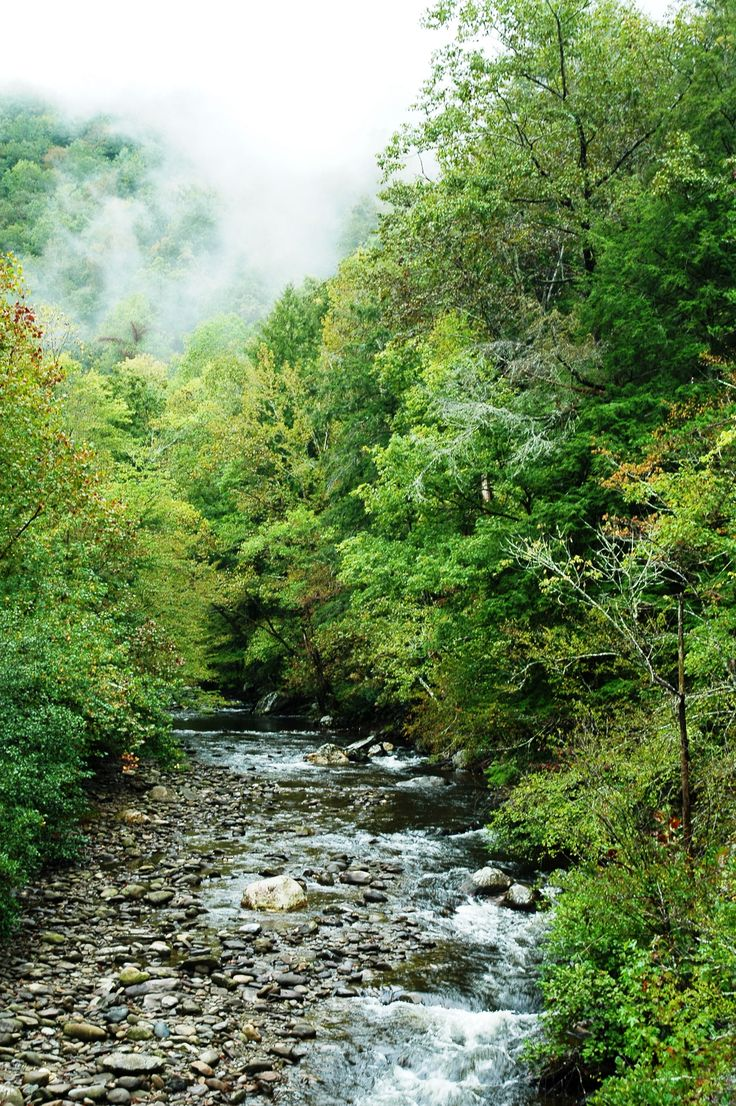 324 Best Great Smoky Mountains National Park Images On