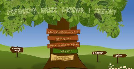 Poznajemy drzewa i krzewy...