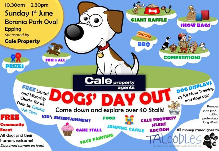 Taloodles Dog's Day Out - 1st June 2014 held in Sydney to raise money for Taloodles Therapy & Assistance Dogs. They do fantastic work in the community! Come along and meet the Taloodles and say hi!