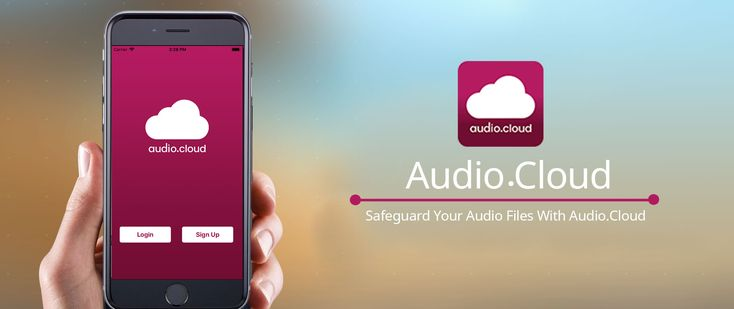 Save your audio files or messages from WhatsApp