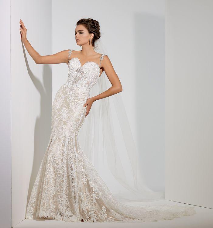 14 best Amalia Carrara images on Pinterest | Short wedding gowns ...