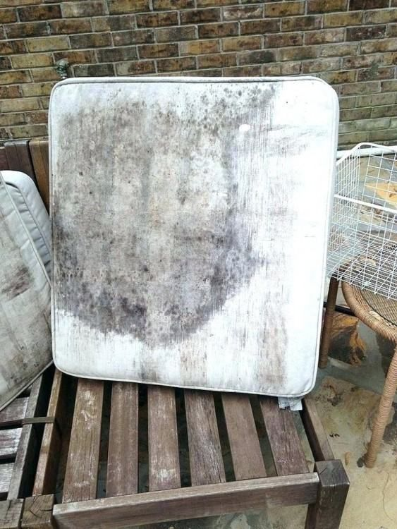 How To Remove Mildew From Patio Furniture Cushions Cleaning