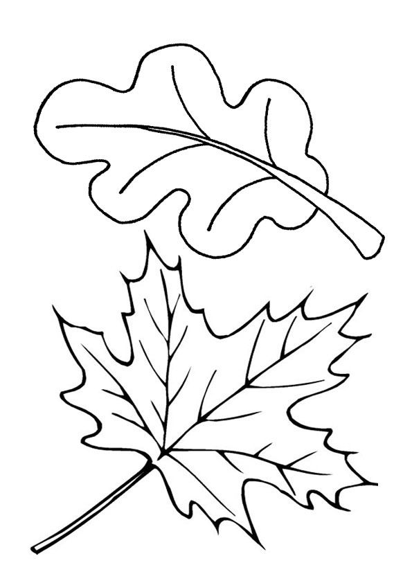 Free Printable Leaf Coloring Page Fall Leaves Coloring Pages Leaf Coloring Page Fall Leaf Template