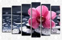 Купите модульные картины цветы + MP3 плеер в подарок! » Страница 6