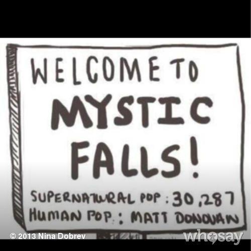 VAMPIRE DIARIES - Mystic Falls, 1 human
