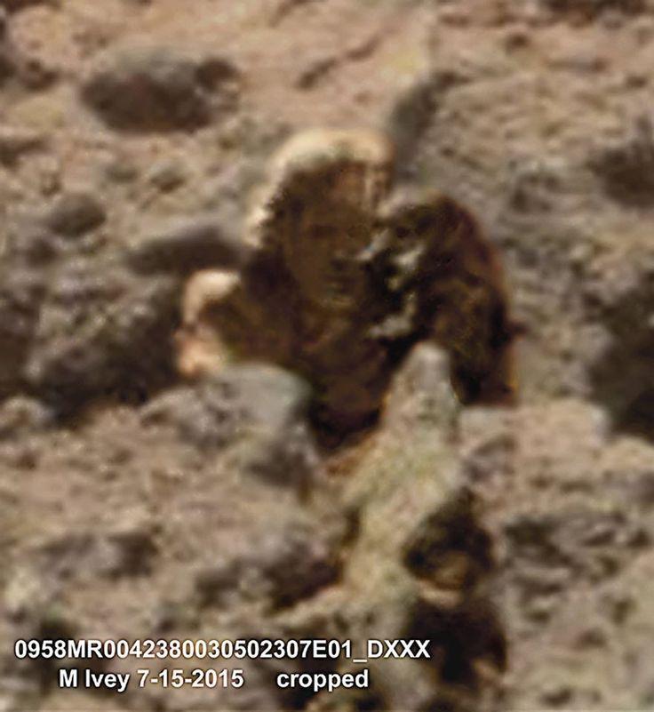 Resultado de imagen para Photos of sculptures over de planet Mars