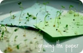 Plantable wedding invitations: Plantable Paper, Seed Paper, Wedding Ideas, Wedding Invitations, Card, Seeds, Seeded Paper, Plantable Wedding