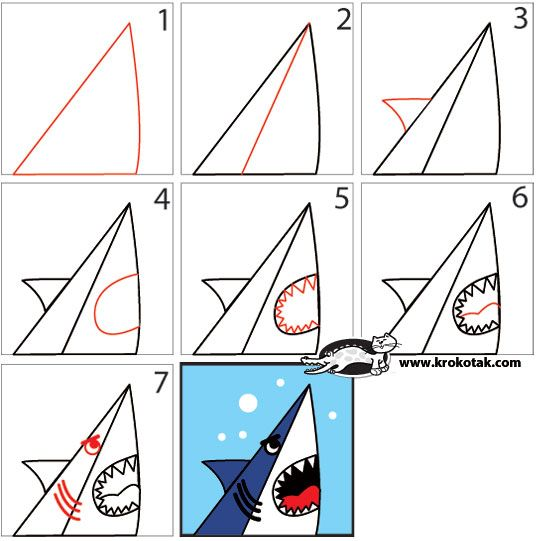 How To Draw a SHARK in 7 Easy Steps