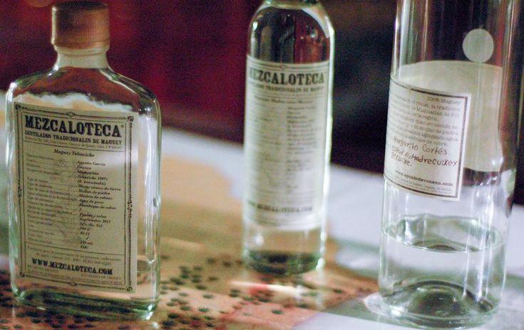 How to drink Mezcal in Oaxaca