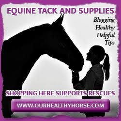 Natural Supplement Guide for Horses | The Naturally Healthy Horse