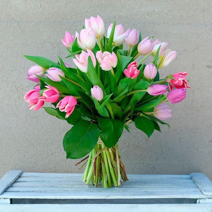 Envía un ramo de tulipanes en tonos rosas, fuchsia y blanco. Una de las flores estrellas de la temporada, recién cortados del campo holandés. Envío a domicilio en Madrid. tulips, tulip bouquet