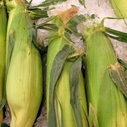 How to Roast Corn on the Cob in the Oven | eHow