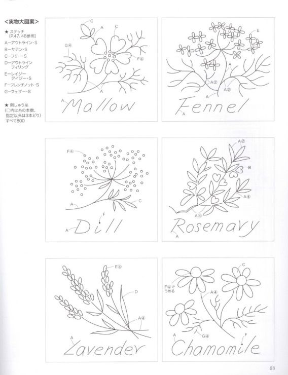 Gallery.ru / Фото #53 - Flower Collection - ravi