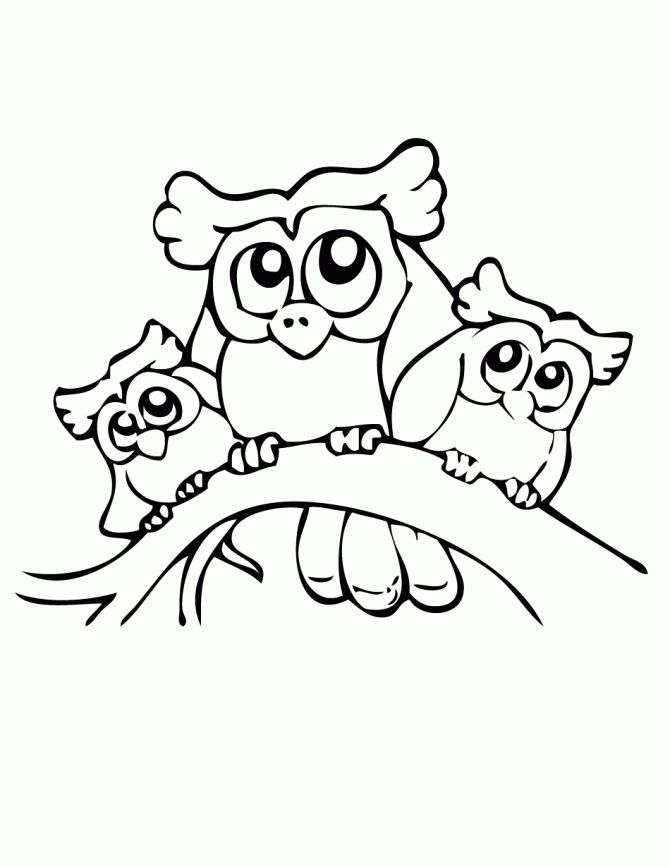 pictures of owls to print owls coloring page free printable coloring pages - Cute Owl Printable Coloring Pages