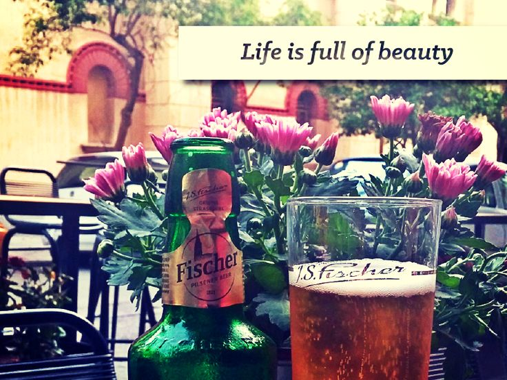 Life is full of beauty #TasteTheMoment #FischerBeer