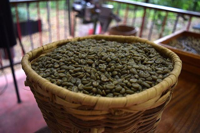 Grüner Kaffee ist eine besondere Art des Kafee´s und trumpft mit vielen Vorteilen auf. Doch kann man mit grünem Kaffee auch abnehmen? Lese alles dazu hier!