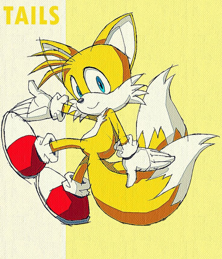 17 Best Images About Tails The Fox On Pinterest