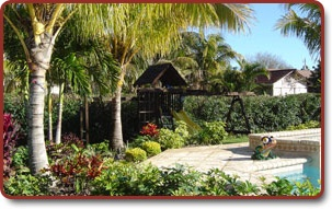 19 Best Landscape Ideas Images On Pinterest Florida