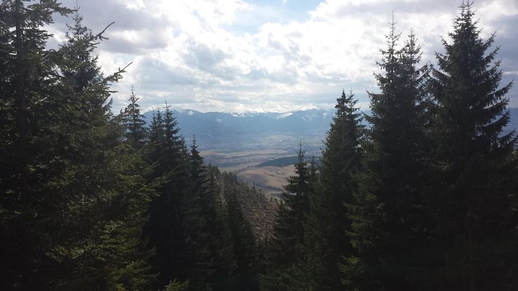 Mountains of Slovakia!  The base of our Wolf tracking volunteer project that takes place every winter.