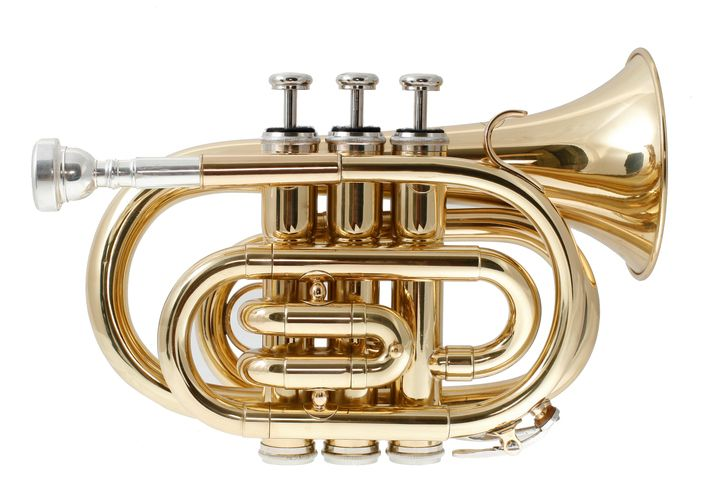 Finding the Best Pocket Trumpet for The Money is easier than you think. Here's a look at our favorites, including our top pick the Mendini MPT-N.