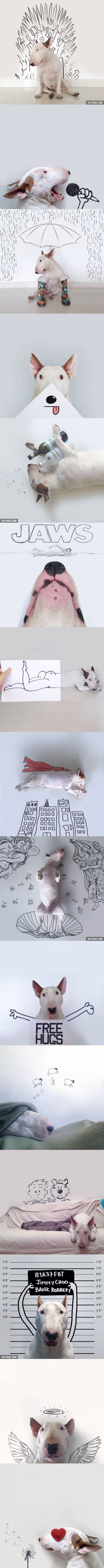 Dog-Loving Artist Draws Hilarious Sketches Inspired By His Bull Terrier (by Rafael Mantesso)