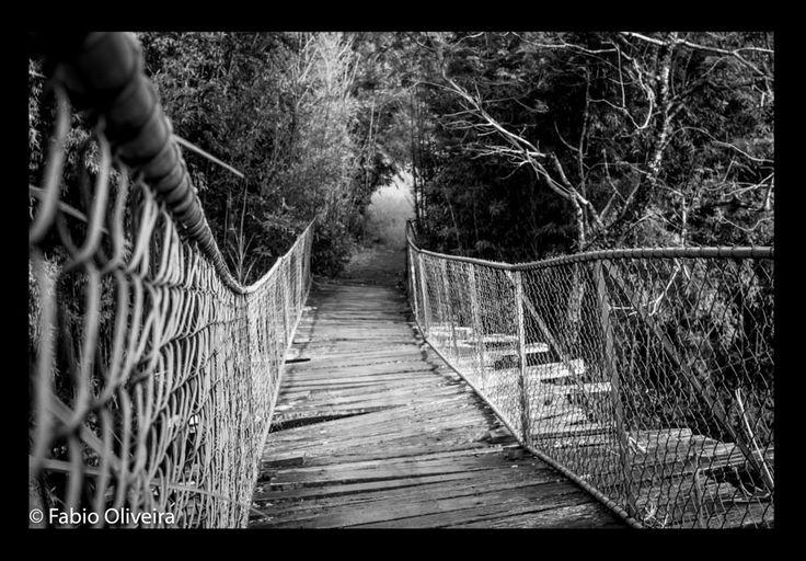 Velha ponte by Fabio Oliveira