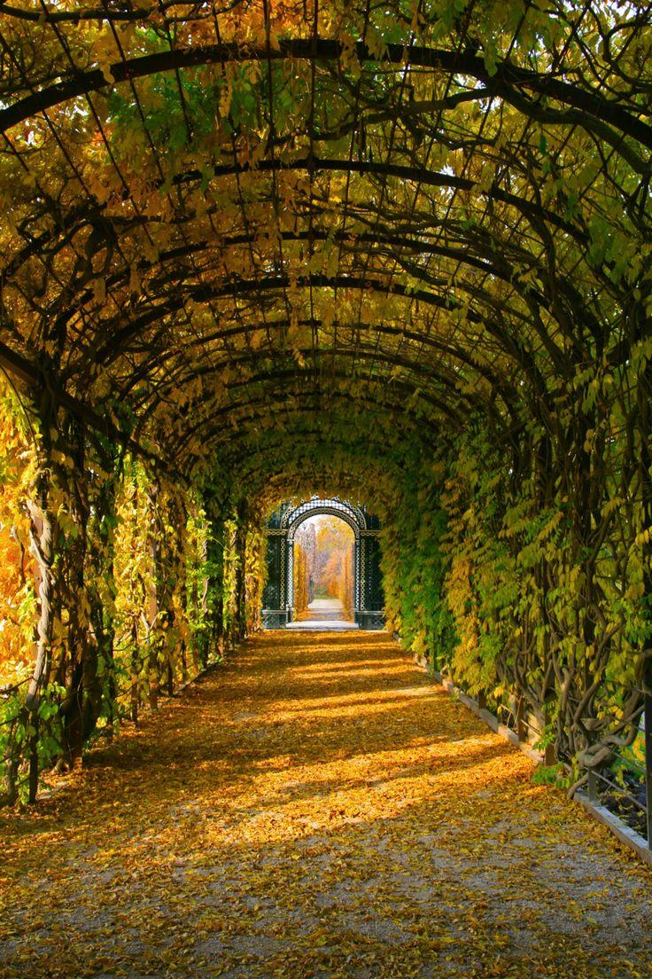The gardens surrounding Schonbrunn in Vienna