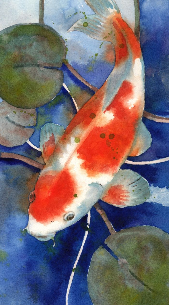 Koi art koi painting watercolor koi fish art koi for Koi fish water