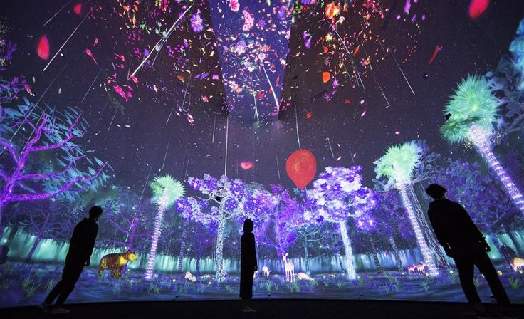 Singapore museum unveils a 360-degree interactive virtual forest