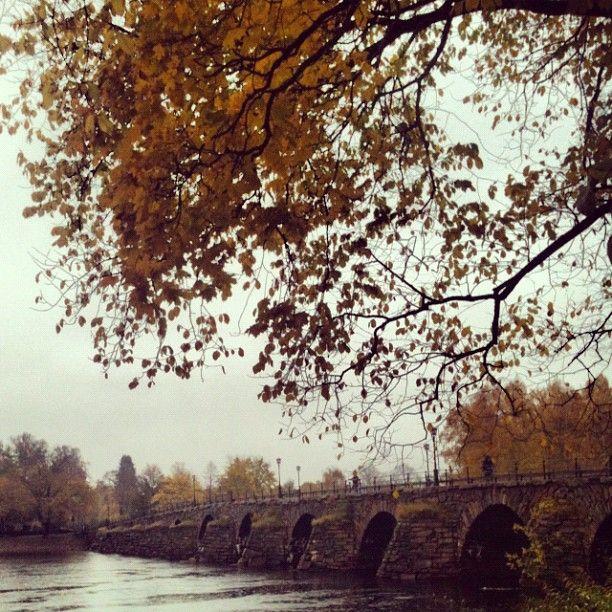 #stenbro #karlstad #värmland #sverige #sweden #bridge #höst #regn #fall #autumn #rain #stonebridge #instagram