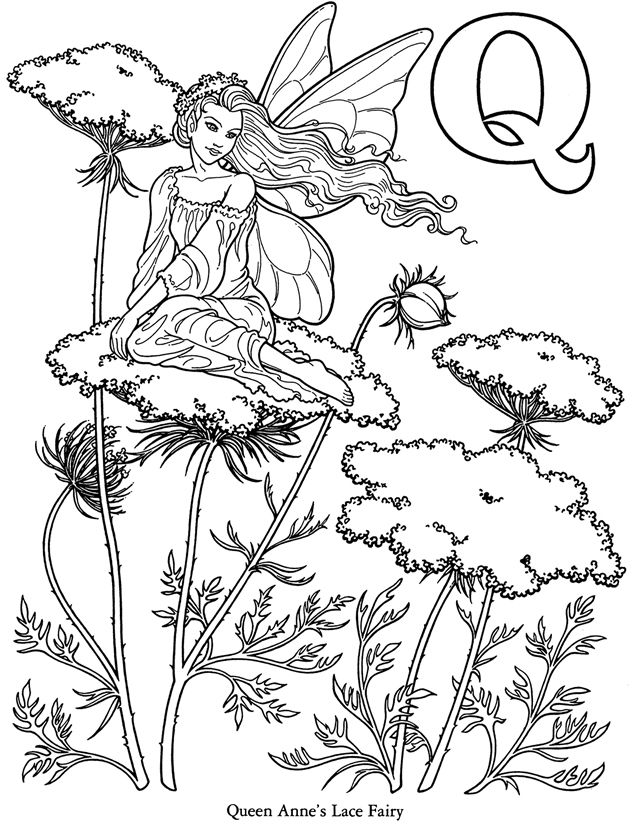 Alphabet Coloring Pages Advanced : Queen anns lace butterfly fairy flower coloring pages