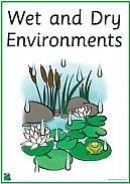 Wet And Dry Environments - 41 Printable Words And Pictures - K-3 Teacher Resources