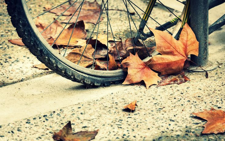 bicycle autumn wheels hd wallpaper