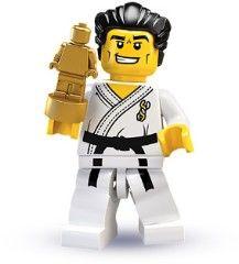 8684-14: Karate Master