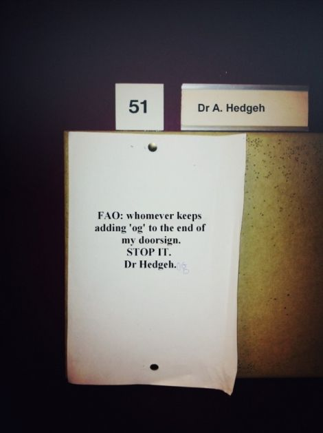 Dr. Hedgehog.Dr. Hedgehogs, Laugh, Funny Signs, Funny Stuff, Humor, Funny Photos, Things, Funnystuff, Giggles