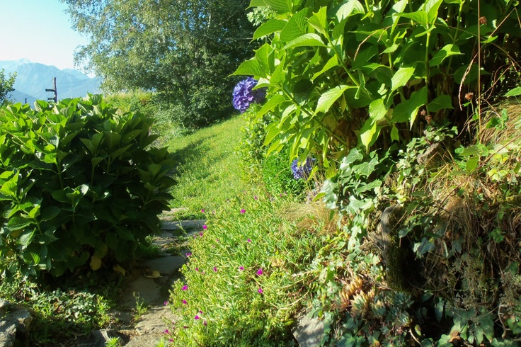 Lake Como Accommodation Panorama Apartment.      walking in the garden overlooking the glittering lake