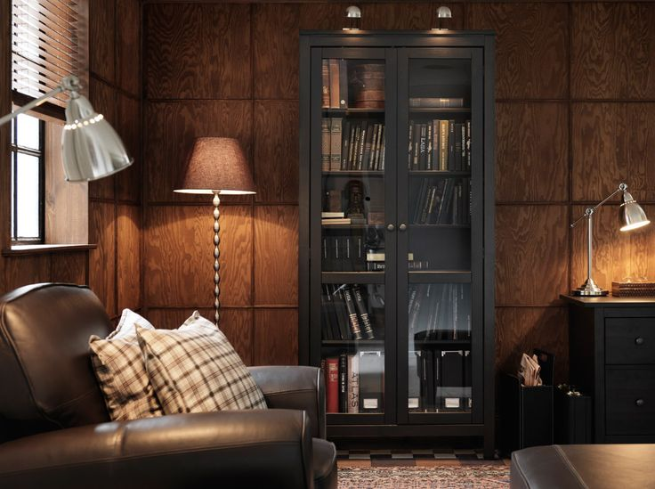 HEMNES black-brown cabinet with tempered glass-doors and FORMAT cabinet lighting