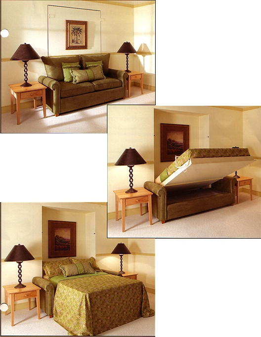 murphy bed - like the couch idea