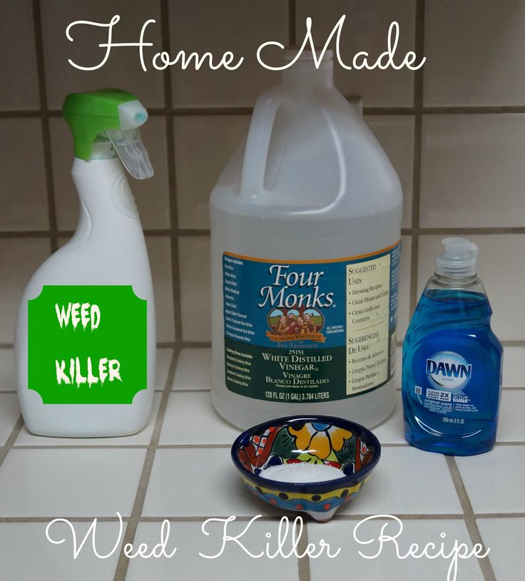 Home-made Weed Killer - Here is what you will need: 1 gallon of white vinegar - 1/2 cup salt Liquid dish soap (any brand) - Empty spray bottle - Put salt in the empty spray bottle and fill it the rest of the way up with white vinegar. Add a squirt of liquid dish soap. This solution works best if you use it on a hot day. Spray it on the weeds in the morning, and as it heats up it will do its work. It isn't toxic to kids and pets. It kills all plants so beware of over-spray.