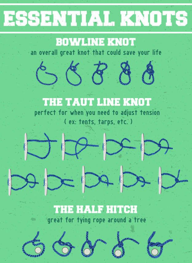 6 Incredibly Helpful Illustrations If You're Going Camping: essential knots