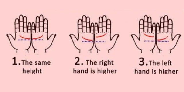 What Does Your Palm Line Says