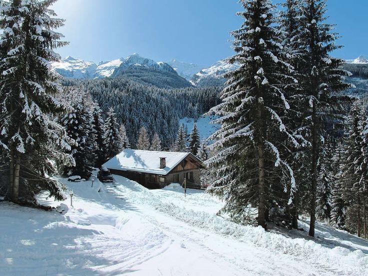 Séjour ski et slow tourisme dans les Dolomites - Chalet au ski, charmant et paisible avec de magnifique vue et paysages dans la vallée de Fleims, Italie  Maison individuelle, 4 - 9 personnes, 3,5 pièces (avec 1 mezzanine), 2 chambres, salon avec coin nuit, 1 salle de bains, env. 150 m²
