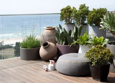 grouping plant pots - Google Search
