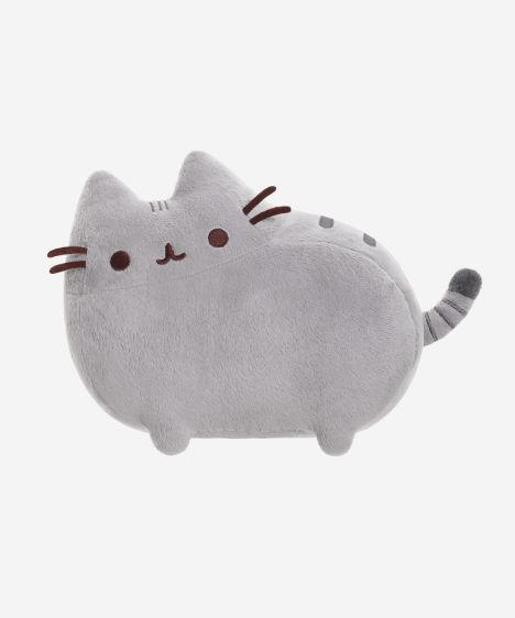 Medium Pusheen plush toy (or Large if they ever get it back again...)
